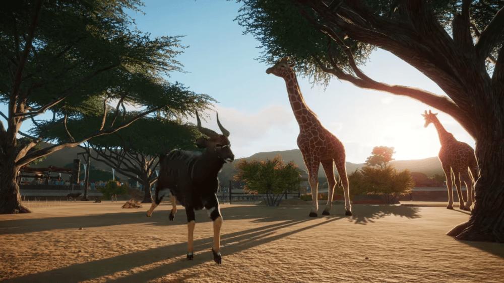 Гайд: как заработать деньги в Planet Zoo
