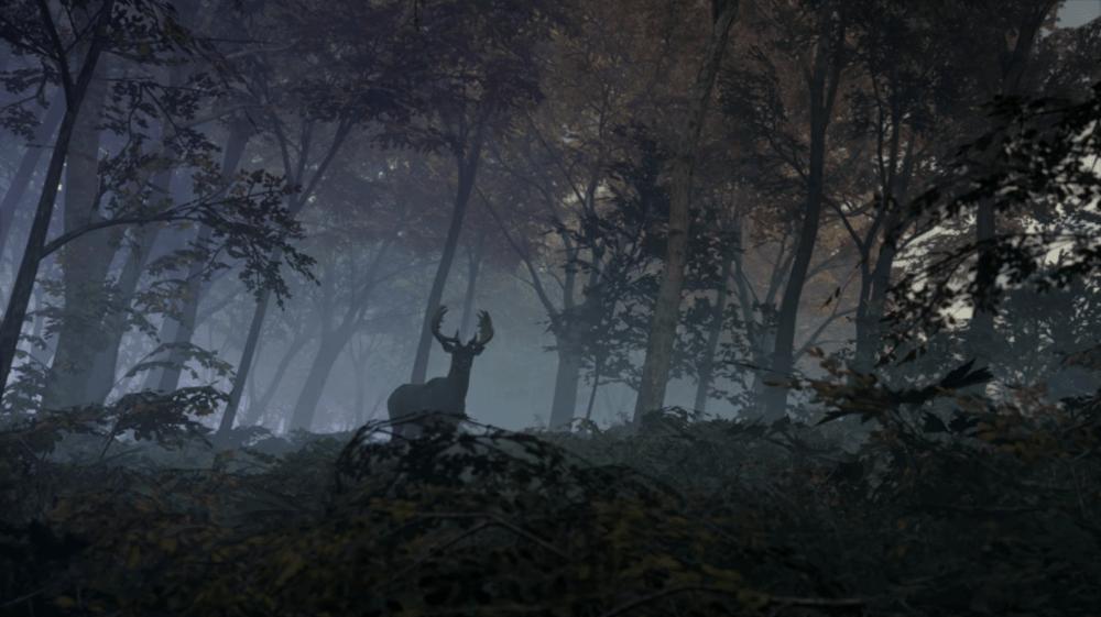 Симулятор охоты theHunter: Call of the Wild доступен бесплатно