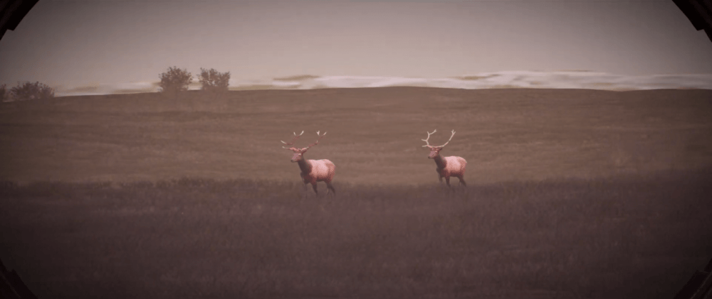 Обзорный трейлер Hunting Simulator 2